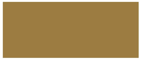 Silvia Ganhão – Facialista Logo